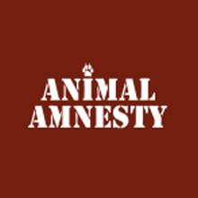 animalamnesty.it
